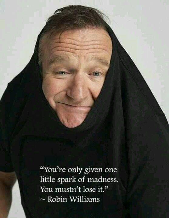 Robin Williams quote - madness